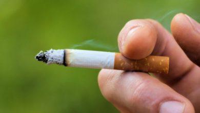 Photo of الدنمارك .. ارتفاع غير مسبوق في عدد المدخنين منذ 20 سنة