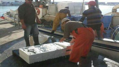 """Photo of سفن الصيد الأوروبية تستعد لدخول المياه المغربية ولجنة """"تقنية"""" ثنائية تشرف على توزيعها جغرافيا"""