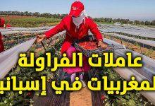 """Photo of إحتجاجات عاملات """"لفريز"""" المغربيات العالقات بإسبانيا .. يصل للإعلام الدولي"""